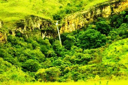 Na Serra da Ventania é possível identificar características de Cerrado (parte superior) e de Mata Atlântica (parte inferior). Foto: Dener Moreira