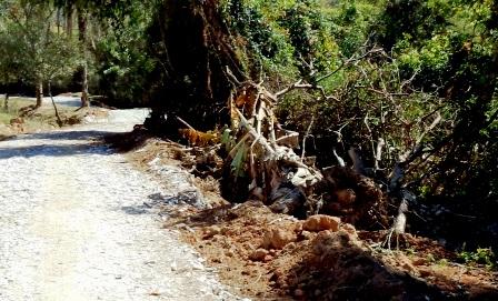 Obra feita sem autorização de órgão ambiental suprimiu vegetação rasteiras e árvores frutíferas a menos de 30m do curso d'água.